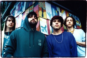 con_animal_collective-300x203