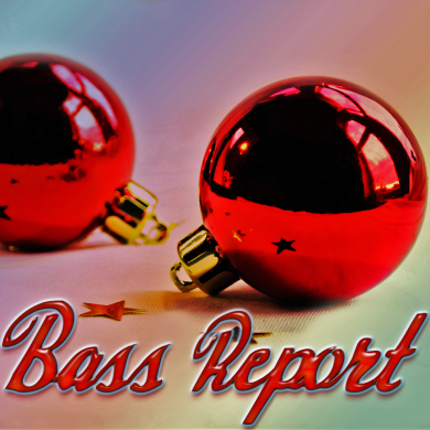 Bass Report Cover Photo - Christmas Edit