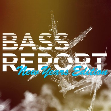 BassReport 77 - New Years Edition