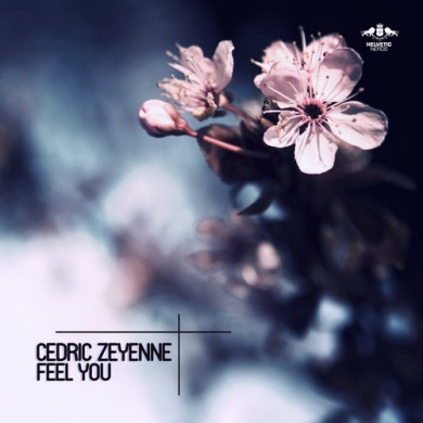 Cedric Zeyenne - Feel You SQ