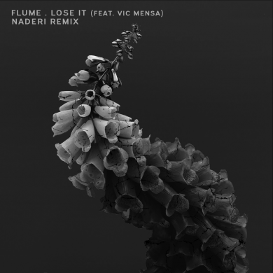 Flume_Lose_It_Naderi_Remix