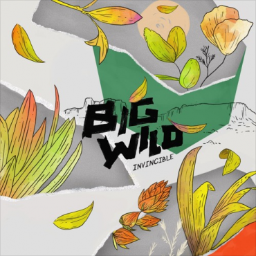 Big Wild – Invincible EP