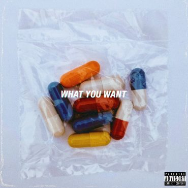 PLVTINUM – What You Want